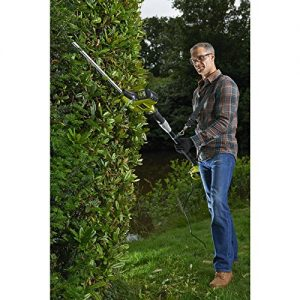 Best Hedge Trimmers With Extension Pole – Reviews 2018 – 2019